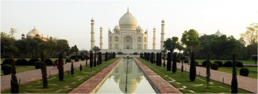 abt global india